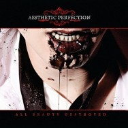1320497252_aesthetic-perfection-all-beauty-destroyed