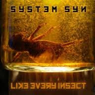 system syn - like every insect
