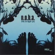 noha - dive in your life